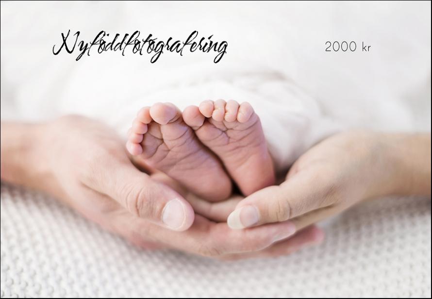 Nyföddfoto, pris, Bergman Hughes Images